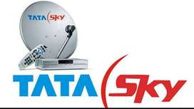 Needed Candidates For TataSky