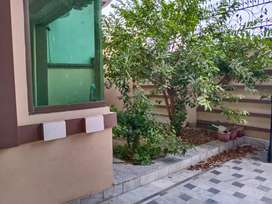 Separate Beautiful house available for rent