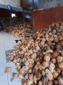 Jual santan murni dari kelapa tua pilihan