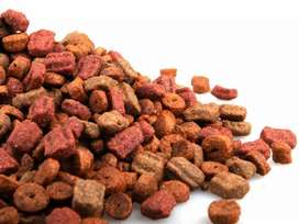 Dog Food Lowest rate