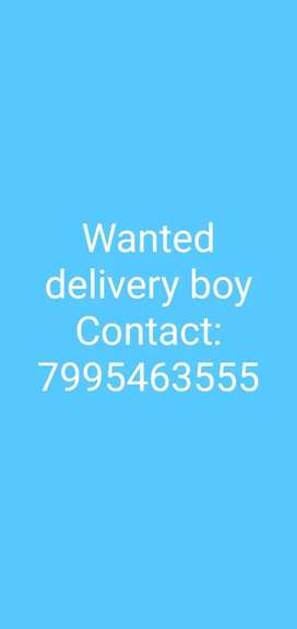 Wanted delivery boy jobs