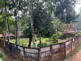 5Cents residential plot for sale near UL cyber park, Kozhikode