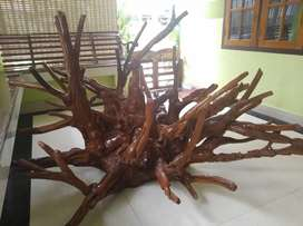 Sculpture of many animals and birds in a single teak root
