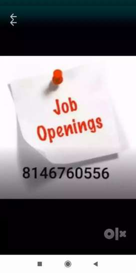 Wanted can didate for data entry job &link