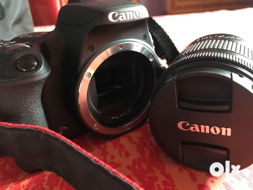 Canon eos200d 0