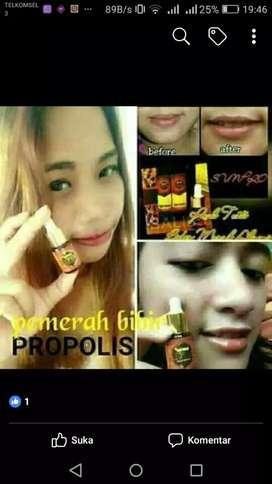 Propolis nasa herbal