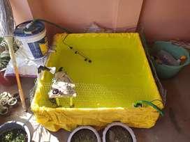 Big Iron Fish Tank With Tarpaulin (Tirpal)