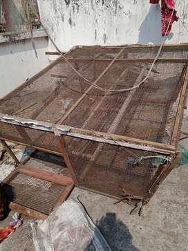 Bird Cage for bird lover