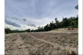Dijual Cepat Tanah 3 Hektar