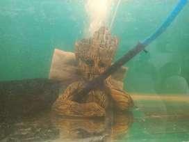 Fully new Groot(statue) for aquarium