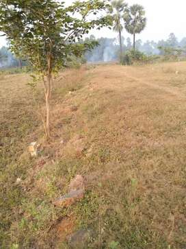 Cost, but least small size plots at 50% discount plots