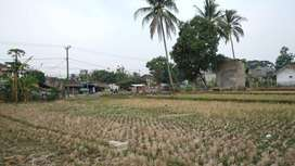 Tanah di Cipatat pinggir jalan provinsi harga 1jutaan untung 40% / thn