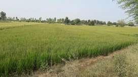 Burja land on road