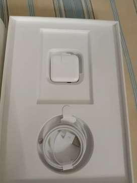 Apple I pad