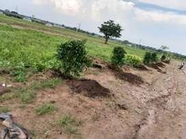 Green Leaf at kandukur farmland project Rs.4999 per sqyds