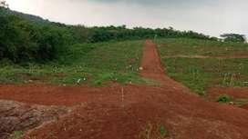 Kavling tanah laris dan murah