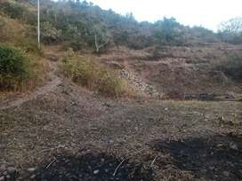 1 bigha 3 biswa agriculture plot for sale near grandview resort