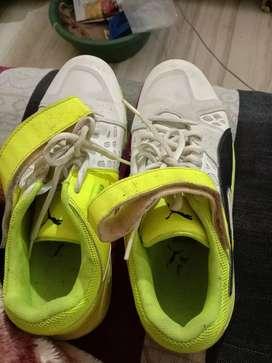 Hy I have 2sports spicks cricket shoe