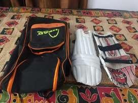 Batting pad and kitbag