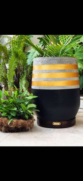 Customized concrete planters with wooden bases indoor and outdoor
