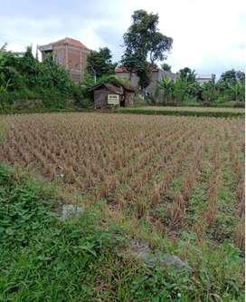 Tanah Soreang Dijual Cepat Murah BU