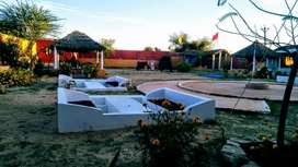 Eco Culture Resort Desert Night Pushkar