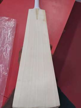 Custom Grade A English Willow Cricket Bat