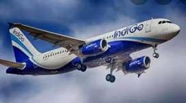 Air Ticketing Executive, ground staff hiring cabin crew ...
