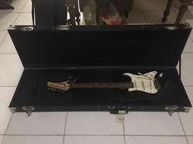 Hardcase Flighcase Gitar