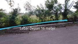 Tanah Sawah Murah dekat Pasar Cebongan Akses Jalan Lebar