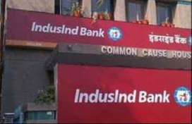 NEED FOR ACCOUNTANT & BACK OFFICE PROFILE FOR INDUSLND BANK