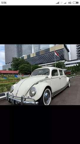 VW Limousin Karoseri