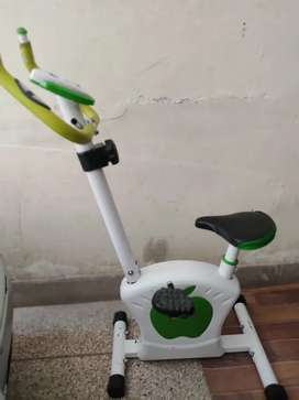 Apple magnetic cardio cycle cycling machine exercise cycle