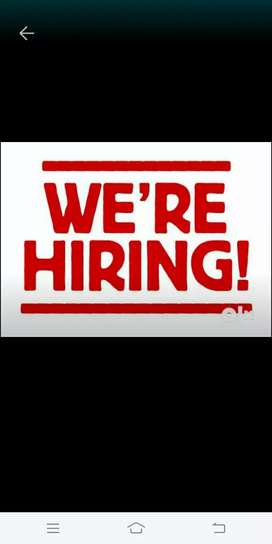 Required female staff for office in Panchkula