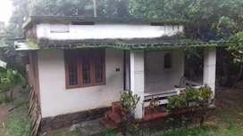 Aluva asokapuram,beautyful land with old house for sale.(urgent)