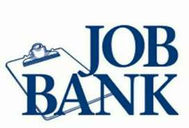 Some new vacancy in your city bank