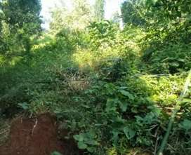 15 cent land for sale in cheeranchira
