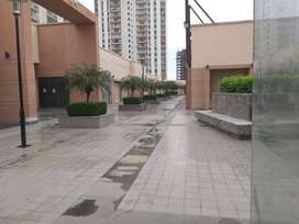 Shop in Downtown mall, Rent 35K 660sqft area