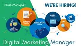 Digital marketing managers