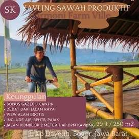 Investasi Tanah Kavling Murah Sawah Produktif, Harmoni Alam 7 Bogor