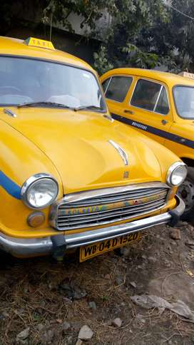 YELLOW YELLOW METAR COMCL TAXI 2009