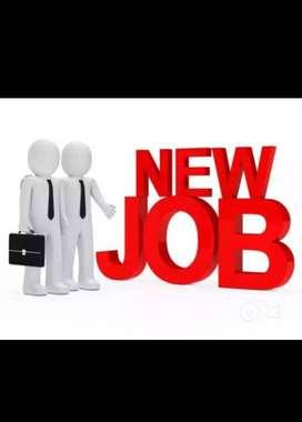 On Line Bidder job in Mohali 92I6O- 33444