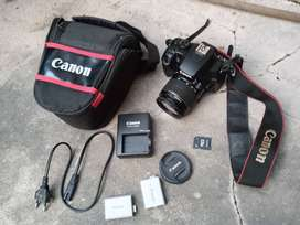 dslr canon 1000d normal nego