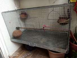 Cage for Bird's/ cat/puppy