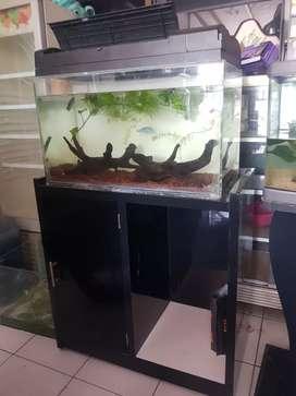 Aquarium akuarium tutup set kabinet 60cm buat aquascape arwana louhan
