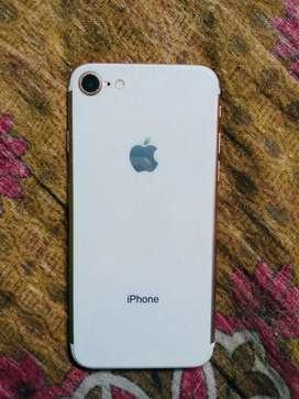 Iphone 7 and ipad mini 2