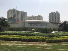 3 BHK ready to move available in a Luxury society