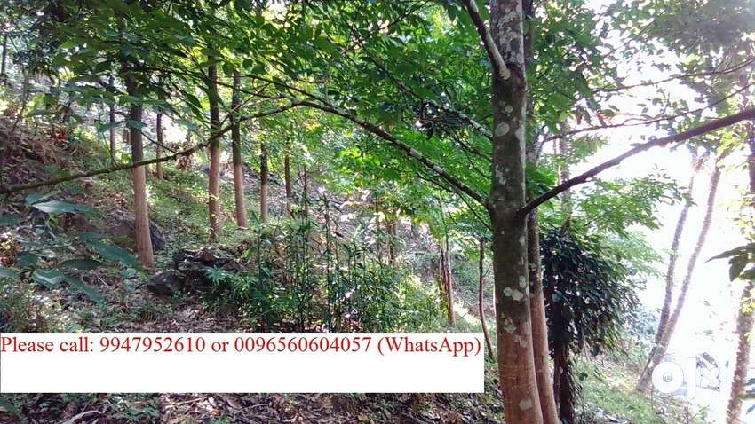 3 Acres 37 cents fully cultivated agriculture land for sale/Exchange