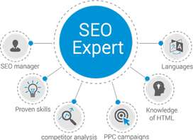 I am Seo Expert available for you