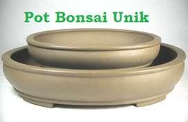 Pot bonsai dan bunga